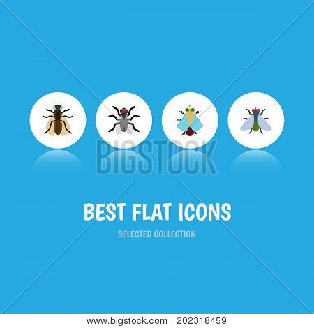 Flat Icon Housefly Set Of Tiny, Fly, Gnat And Other Vector Objects