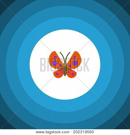 Moth Vector Element Can Be Used For Butterfly, Monarch, Moth Design Concept.  Isolated Monarch Flat Icon.