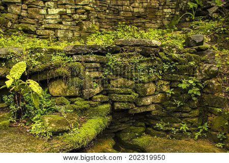 A lot of rocks / moss / moss on the rock