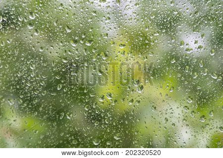 Water drops on glass with blury green background.