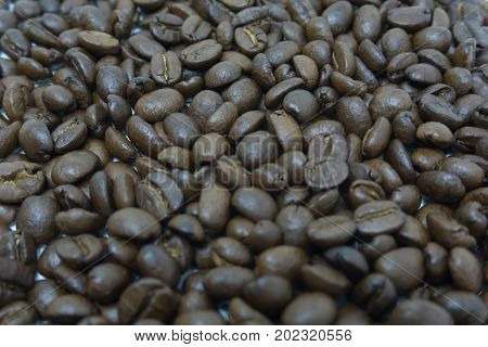 pile of coffee bean. dark roasted coffee bean. selective focus.