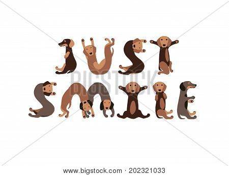 Just Smile. Dachshund Dogs Letters