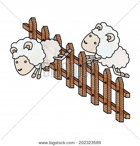 sheep animal couple jumping a wooden fence in color crayon silhouette on white background vector illustration