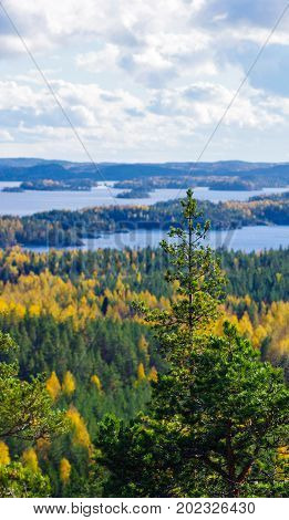 Peaceful and beautiful autumn colors in Finland