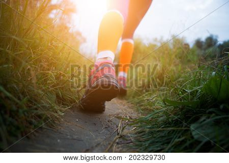 Photo of sportswoman walking along path in forest at morning, flare natural