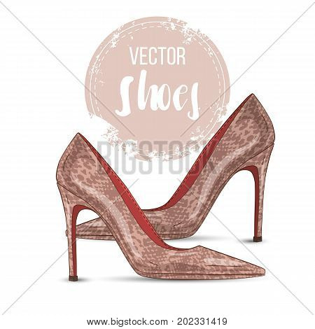 Vector color womens reptile leather pointed toe stilettos. Front view