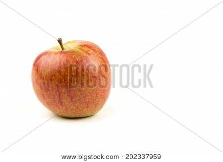 Single red apple on a white background