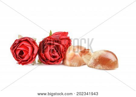 Valuable precious Carnelian Pyu turtle ancient beads with red roses on white background