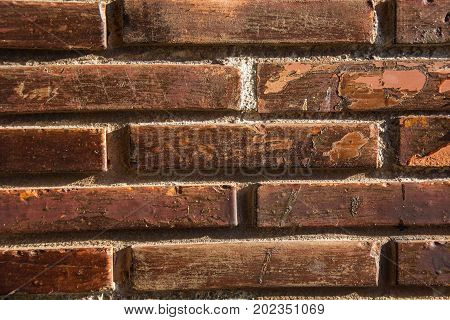 Photo of a wall detail with several bricks and sunlight