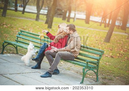 Beautiful family couple with white cute Maltese dog spending time in autumn park. Man and woman sitting on bench and have fun with their pet terrier. Family, animal, life, people, seasonal concepts.