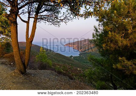 Greek coast at sunset with a small bay covered with dense forest in Sithonia, Greece