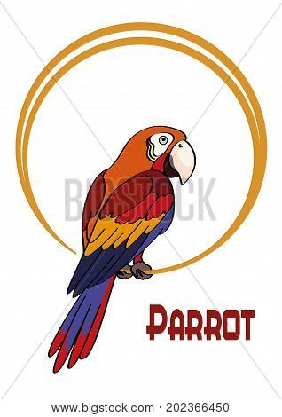 Exotic Bird, Cartoon Colorful Parrot Macaw Sits on the Ring. Vector