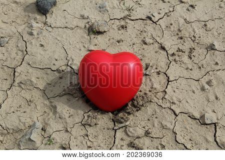 This is  full red heart  in dried-up puddle