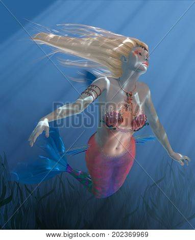 Mermaid Coral 3d illustration - Sunbeams shine down through clear ocean waters as Mermaid Coral swims above a kelp bed.