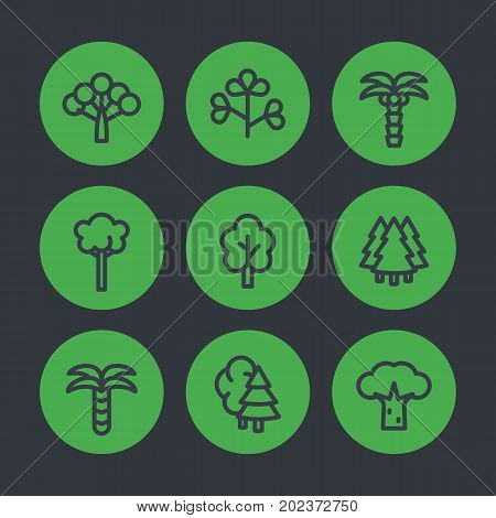 Trees line icons set, palms, firs, baobab, eucalyptus and bushes
