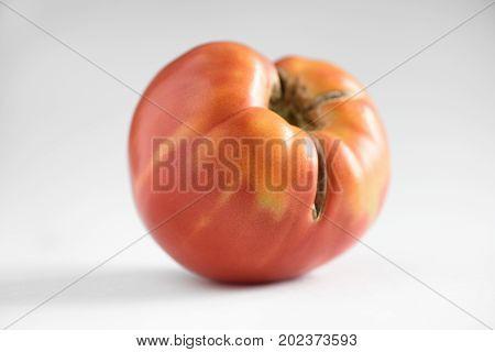 Big ripe heirloom organic imperfect tomato closeup