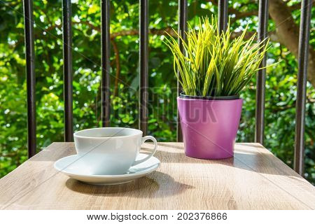 Espresso Coffee In White Cup On The Wooden Table With Small Mock Up Plant At Terrace Or Balcony Of H