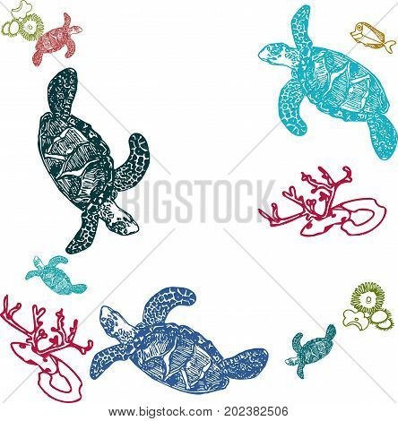 Fish turtle sea life hand drawn set. Sea  sketch of life