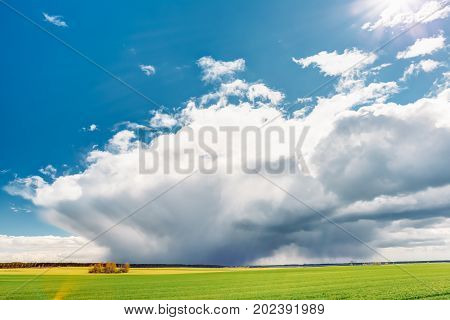Countryside Rural Field Or Meadow Landscape With Green Grass Under Scenic Spring Blue Dramatic Sky With White Fluffy Clouds. Rain Clouds On Horizon On A Sunny Day. Panorama Of Agricultural Landscape.