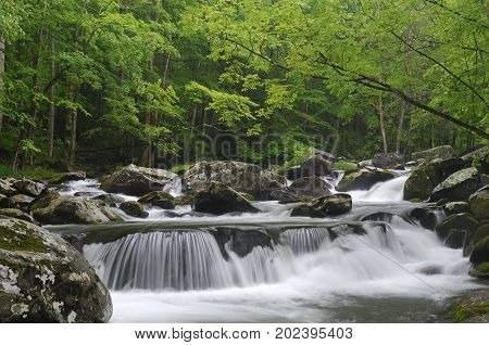 Large Cascade in the middle prong of the Little Pigeon River in Tremont of Great Smoky Mountains National Park Tennessee USA in mid May.