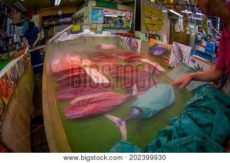 TOKYO, JAPAN JUNE 28 - 2017: Fish and seafood over a table for sale at the Fish Market Tsukiji in Tokyo Japan, Tsukiji Market is the biggest wholesale fish and seafood market in the world, fish eye effect.