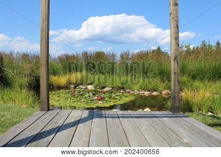 Wooden walkway and posts in foreground of calm tranquil pond with floating leaves and flowers in bloom. Rocks and tall ornamental grass surrounding calm water.