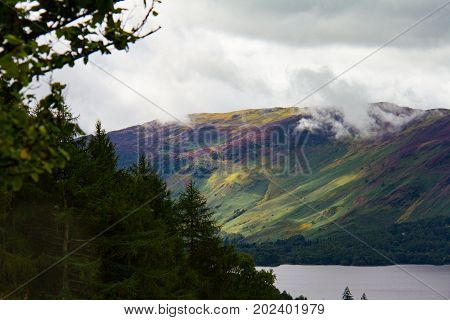 Forest And Lake Derwent Water In Keswick, Lake District, Uk- Telephoto