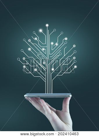 Teenage girl holding a mobile phone and a circuit board tree network concept