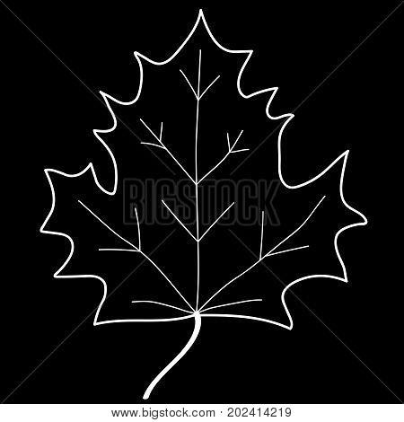 Maple leaf sign. Monochrome plane icon isolated on black background. Mono nature logo. Botany wood or garden symbol. Ecology flat silhouette. Foliage mark. Stock vector illustration