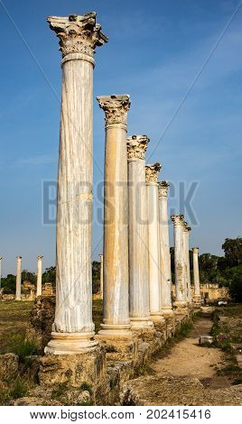 Famagusta ruins of Salamis in Northern Cyprus