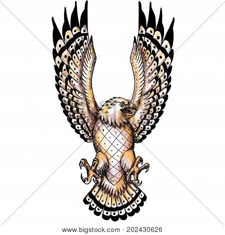 Tattoo style illustration of an osprey Pandion haliaetus also called fish eagle sea hawk river hawk and fish hawk a diurnal fish-eating bird of prey swooping spreading wings viewed from front.