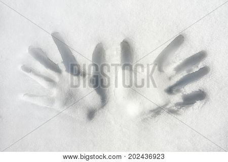 Print of both palms/hands on snow surface. Outdoors. Closeup.