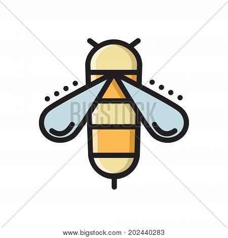 Honey bee, colorful thin line flat style icon, vector illustration isolated on white background. Flat style colorful thin line, outline icon with honey bee