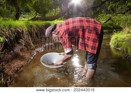 Contemporary lucky prospector found lot of gold in creek when panning sand