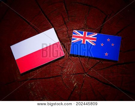 Polish Flag With New Zealand Flag On A Tree Stump Isolated