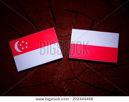 Singaporean Flag With Polish Flag On A Tree Stump Isolated