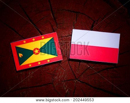 Grenada Flag With Polish Flag On A Tree Stump Isolated