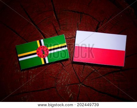 Dominica Flag With Polish Flag On A Tree Stump Isolated