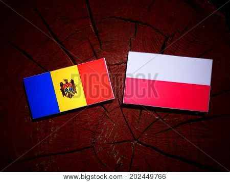 Moldovan Flag With Polish Flag On A Tree Stump Isolated