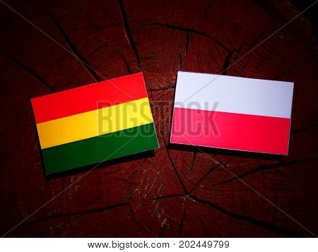 Bolivian Flag With Polish Flag On A Tree Stump Isolated