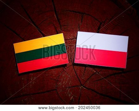 Lithuanian Flag With Polish Flag On A Tree Stump Isolated