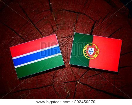 Gambia Flag With Portuguese Flag On A Tree Stump Isolated
