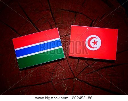 Gambia Flag With Tunisian Flag On A Tree Stump Isolated