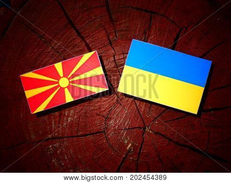Macedonian Flag With Ukrainian Flag On A Tree Stump Isolated