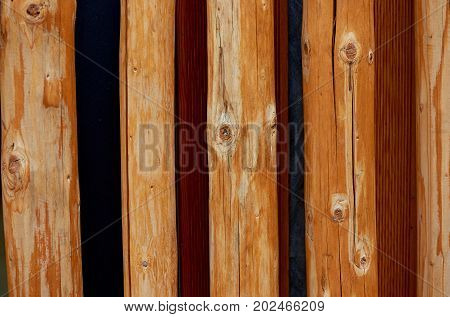Texture, pine tree branches, arranged in a single row. Creative solution for a fence, exterior wall, design