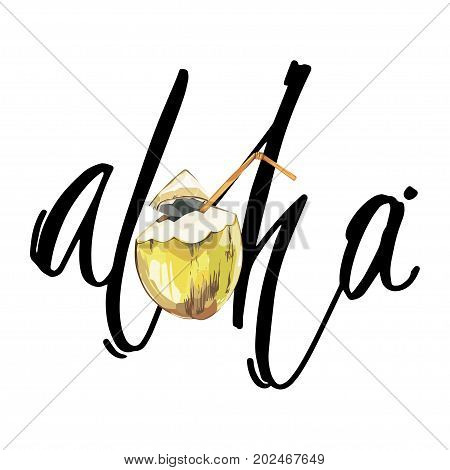 Lettering phrase - Aloha. Composition with watercolor hand drawn coconut. Background for food packaging, cards posters. isolated on white