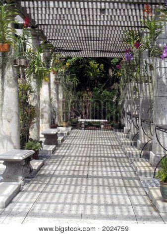 Orchid Lattice Garden
