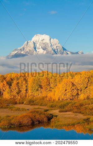 a scenic fall landscape in grand teton nationlal park wyoming