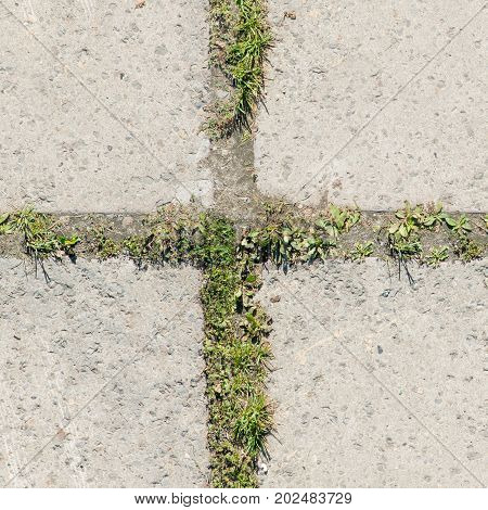 Picture seamless texture for concrete tiles high resolution. Best use for promotion design booklets background. Image texture gray street blocks. Paving stones.
