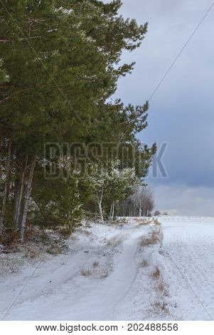 Ground road snow covered leading by edge of forest and field under cloudy sky in winter, Podlasie Region, Poland, Europe